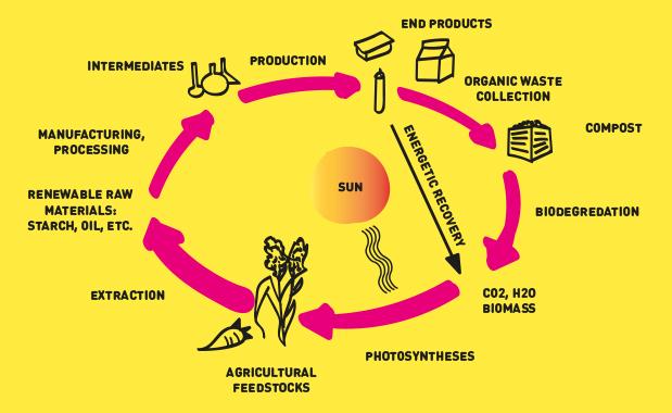 Biodegradable Plastics   wdkadesignforimpact